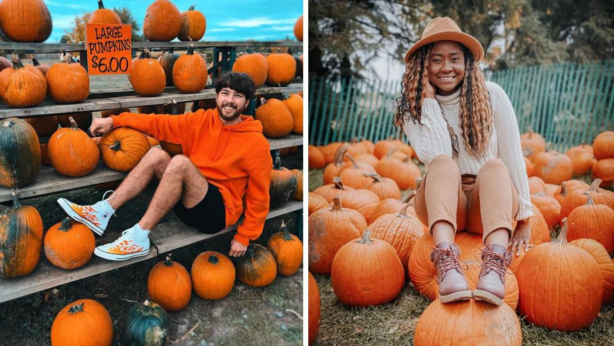 11 Pumpkin Patches Near Toronto That Will Spice Up Your Season This Fall
