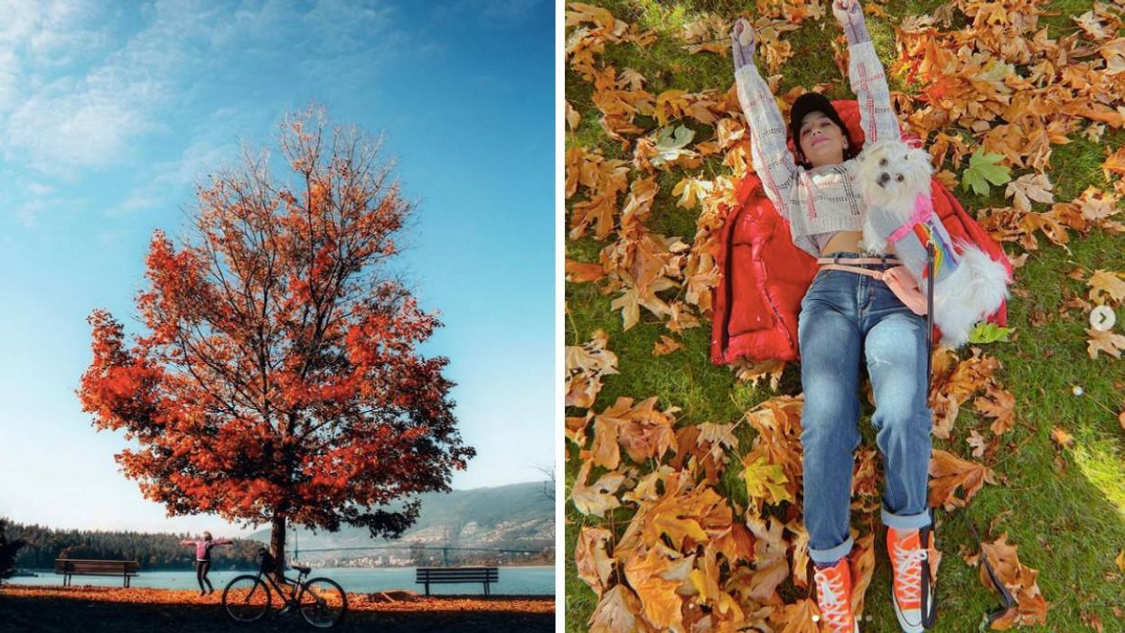 6 Places To Visit In BC If You Love Epic Fall Views But Are Too Lazy For Hiking