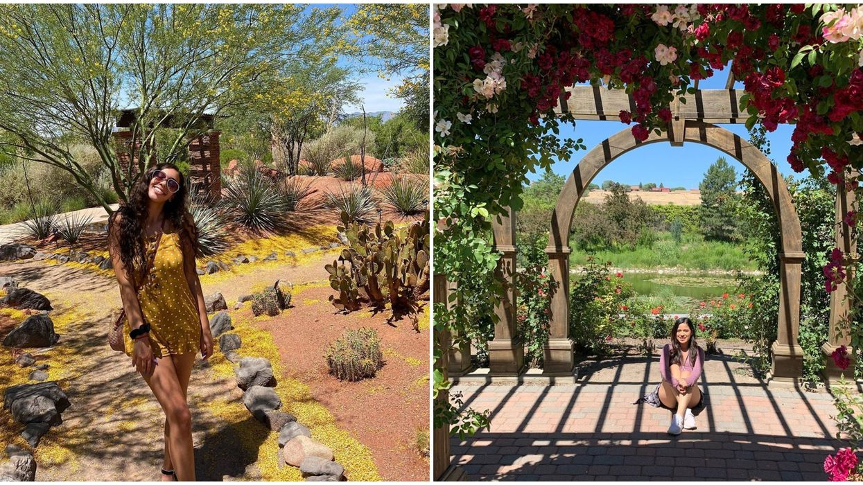 6 Salt Lake City Gardens You Can Visit For A Dreamy Day Among The Flowers