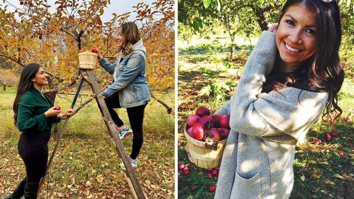 7 Cute Spots To Go Apple Picking Around Ottawa This Fall