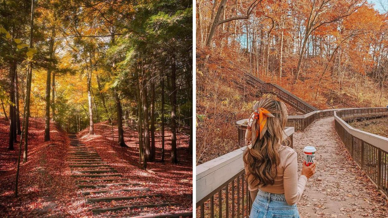 7 Toronto Fall Hikes That Will Take You Through A Red & Gold Wonderland