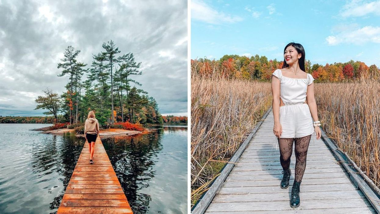 8 Boardwalk Trails In Ontario That Will Lead You To Magical Fall Views