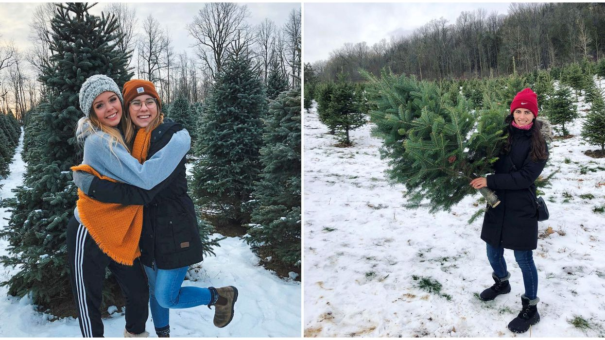 8 Christmas Tree Farms In Ontario That Will Get You In The Holiday Spirit