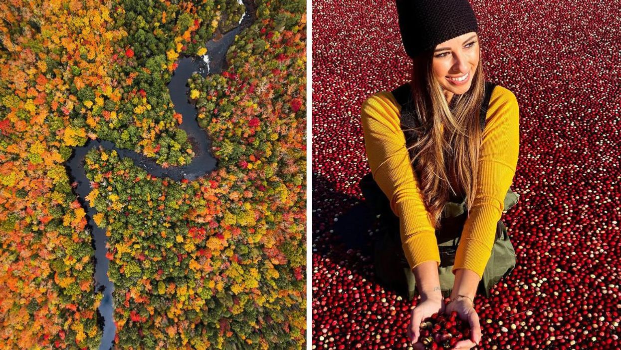 8 Fall Activities In Muskoka That Let You Enjoy The Season To The Fullest