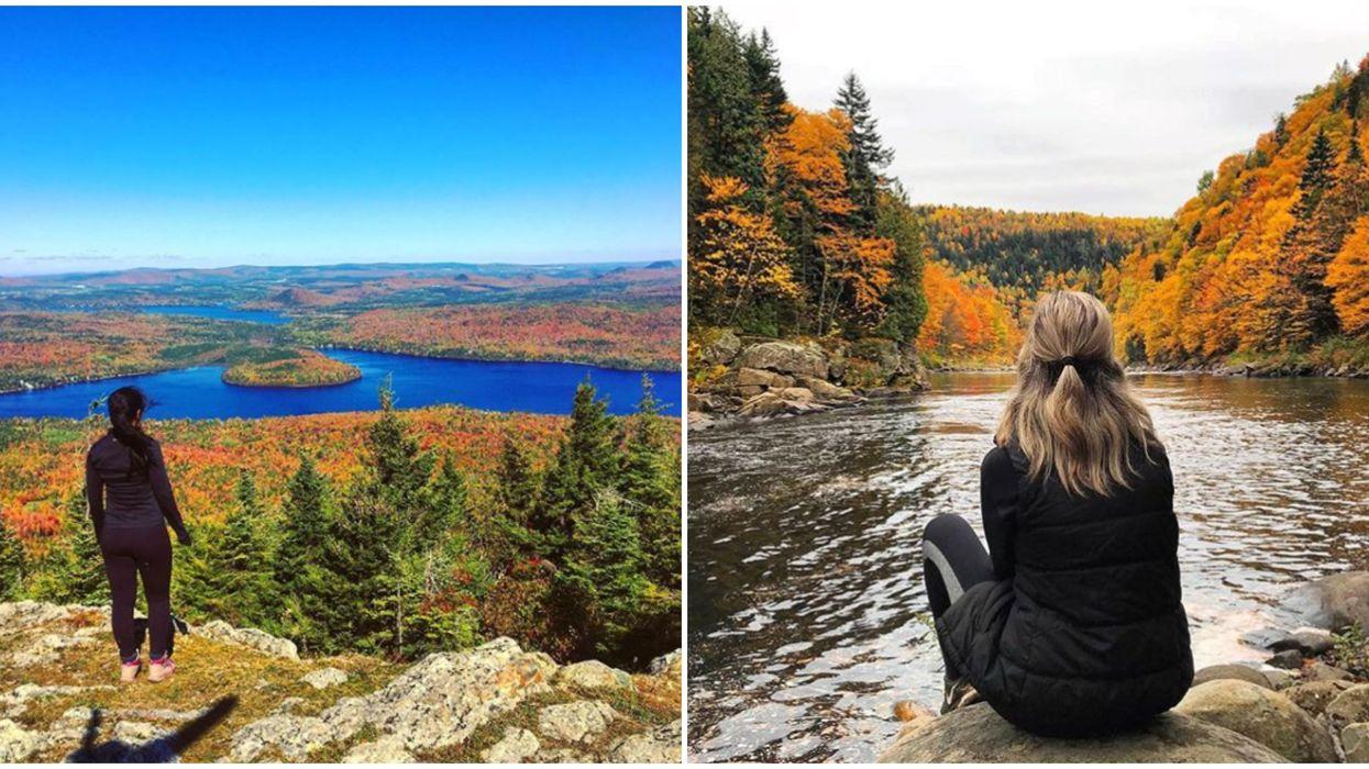 8 hikes à moins de 2h de Québec pour des vues magnifiques cet automne