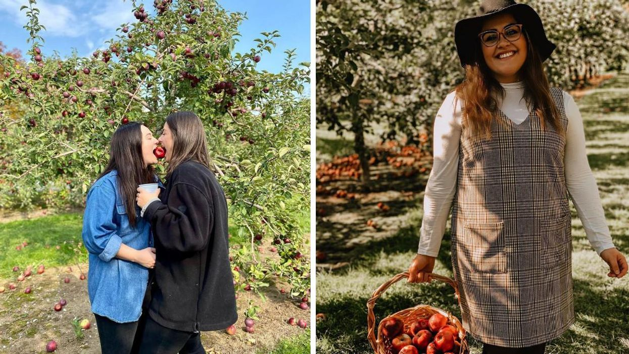 8 vergers près de Québec où aller cueillir des pommes avec ta « date » cet automne