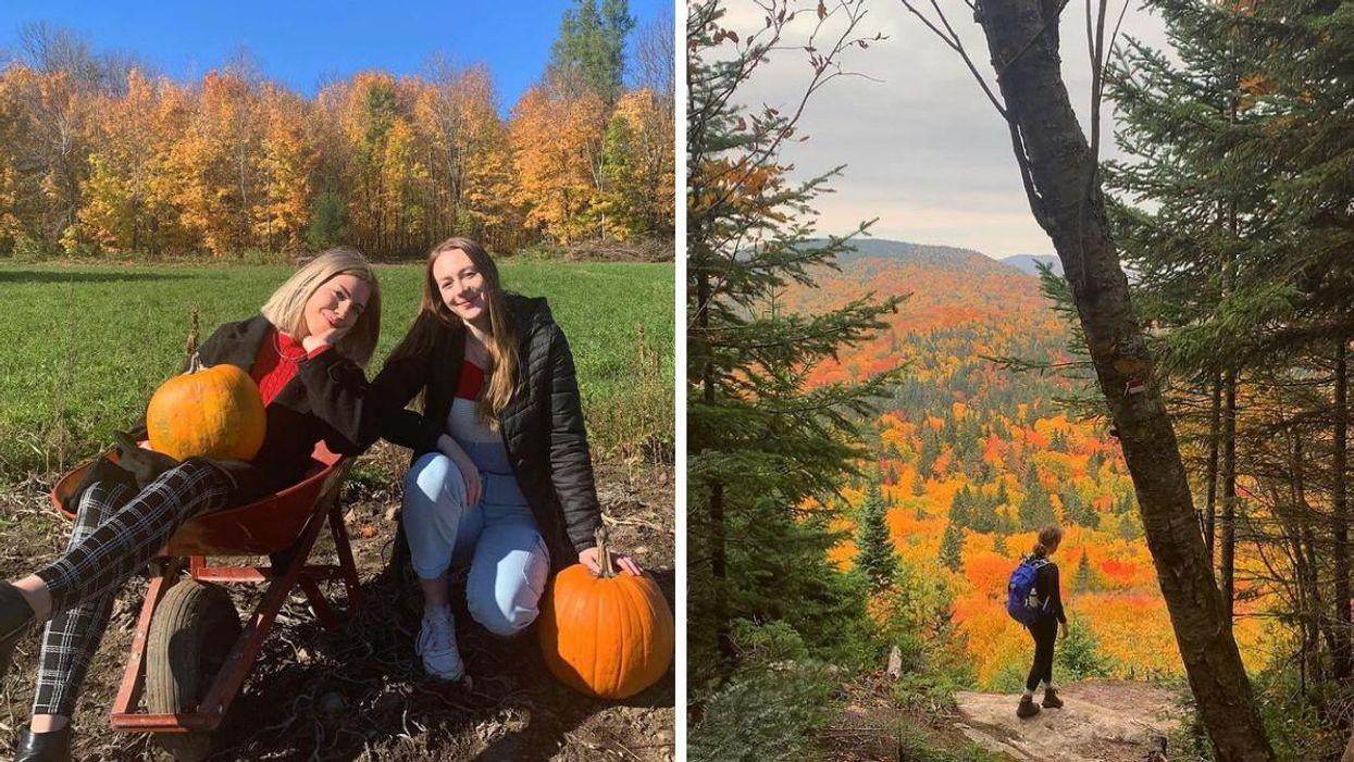 9 endroits super romantiques où amener ta « date » à Québec et les environs cet automne
