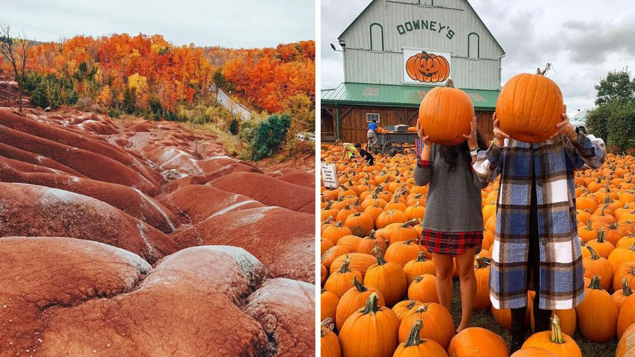 9 Fall Activities Near Toronto Where You Can Have Fun For $30 Or Less