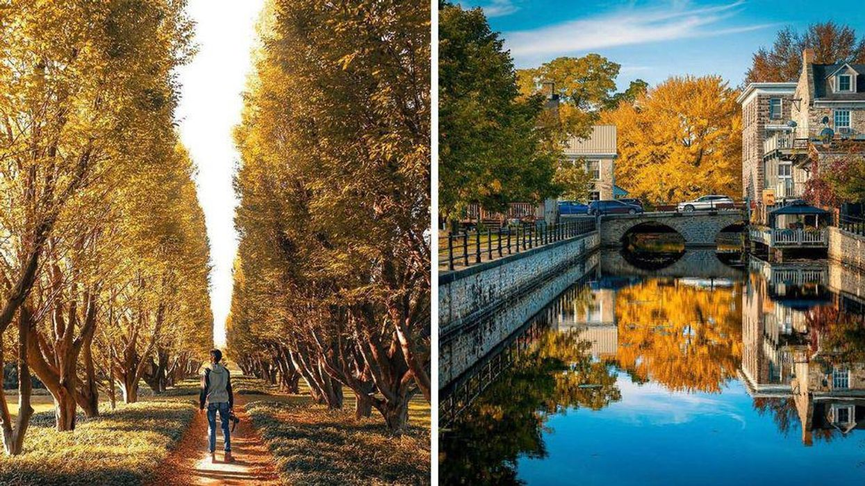 9 Gorgeous Places In Ontario That Feel Like You're Exploring Europe In The Fall