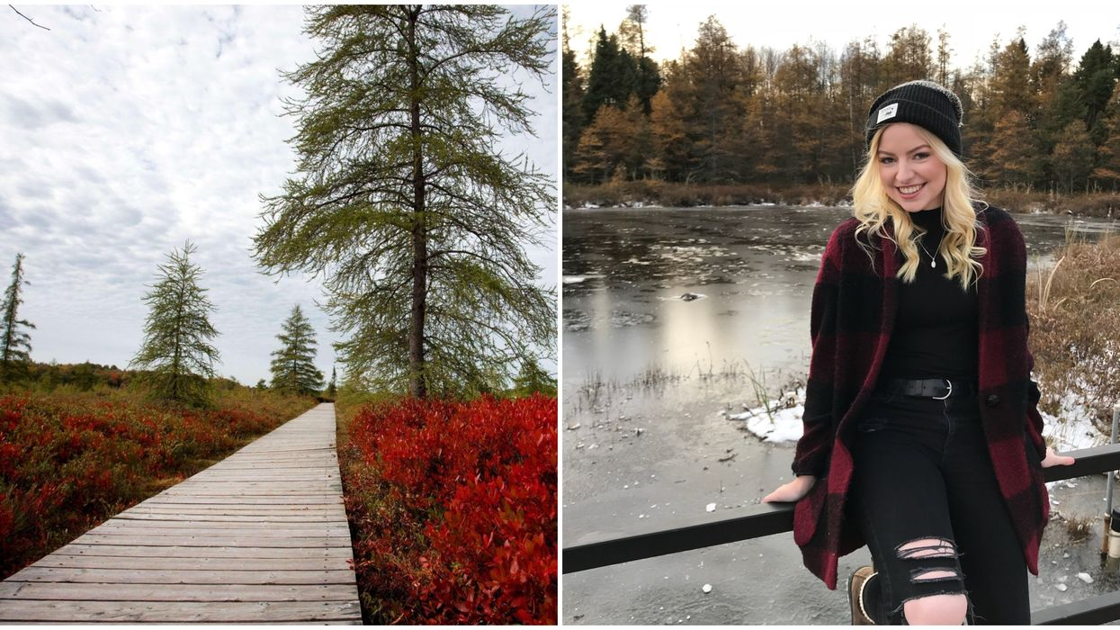 9 Ontario Boardwalk Trails That Are Perfect For Your Friend Who Hates Hiking