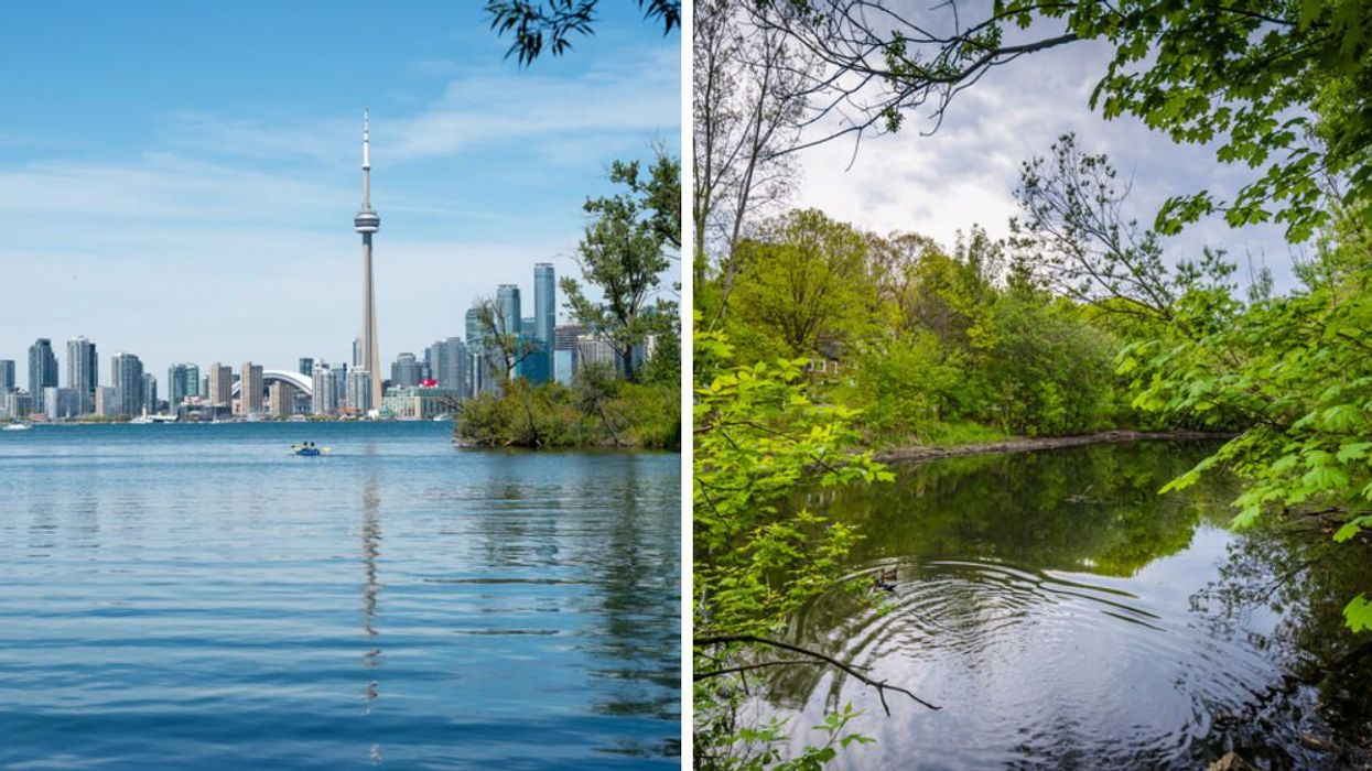 A Human West Nile Virus Case Was Just Reported In Toronto & It's The First Case In 2021