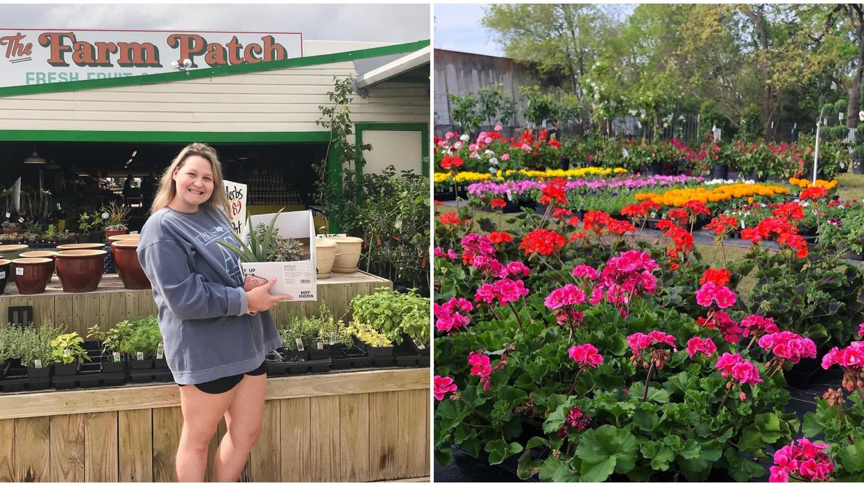 A Plant Store Near Houston Is The Cutest Place To Spend A Summer Day