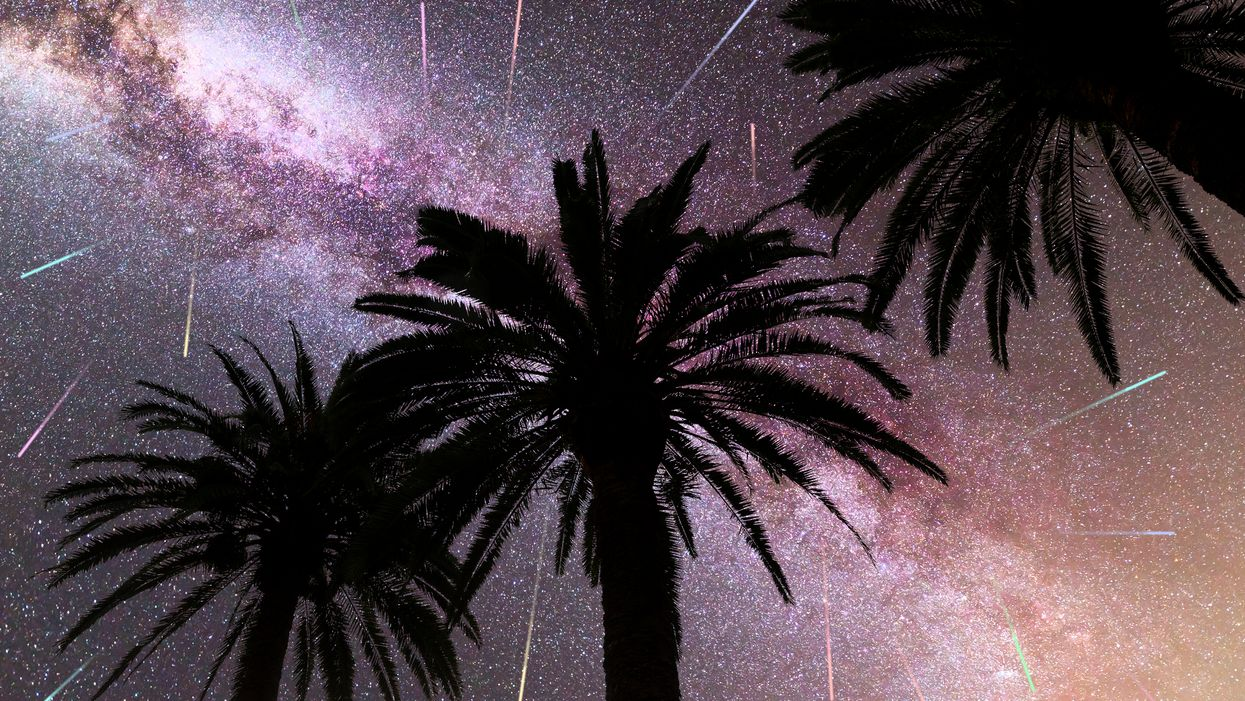 Alpha Monocerotids Meteor Shower May Take Place Tomorrow Night In Florida Skies