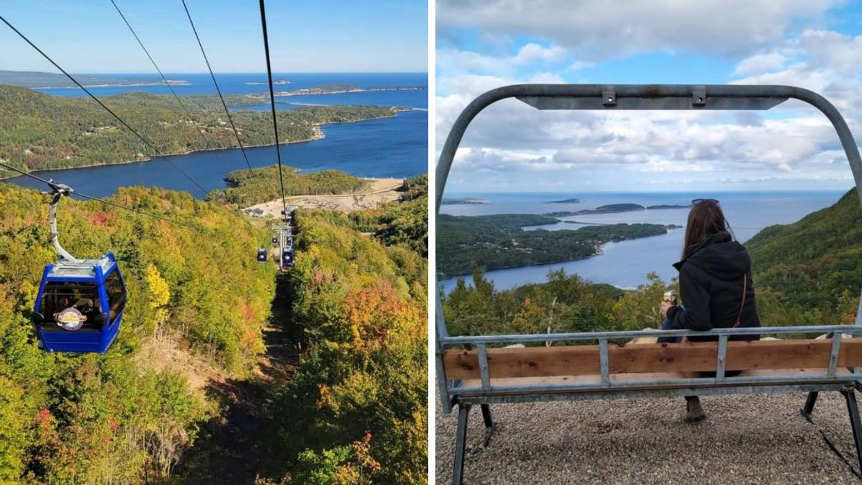 Atlantic Canada's Only Gondola Ride Is The Perfect Spot To Catch The Changing Leaves