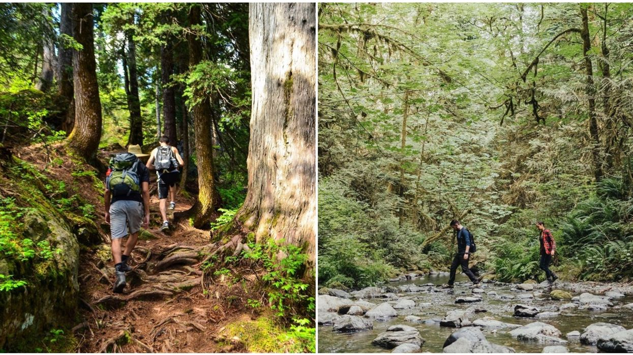 BC Parks Will Reopen Just In Time For May Long Weekend & For Camping On June 1