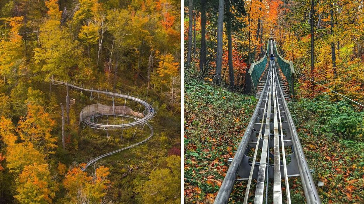 Blue Mountain Resort's 1-km Coaster Will Take You On A Wild Ride This Fall (VIDEO)