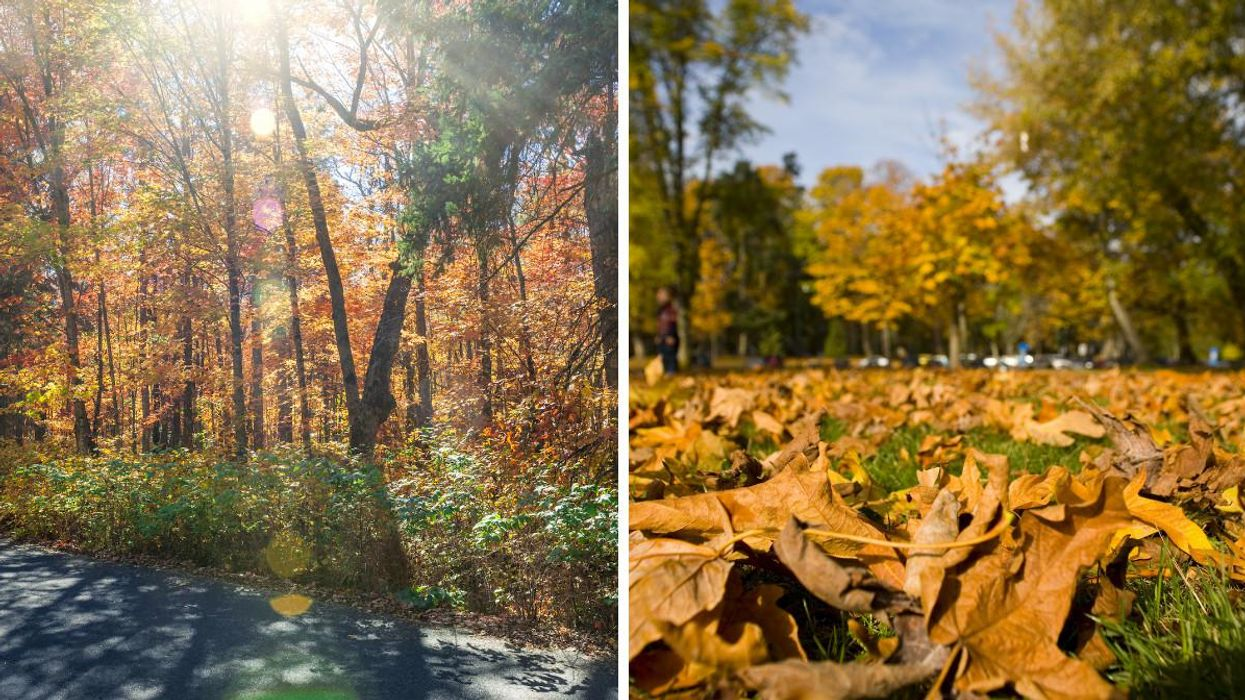 Canada's Weather Is Going To Get Wild This Week & Some Regions Are In For A 'Fall Sizzler'