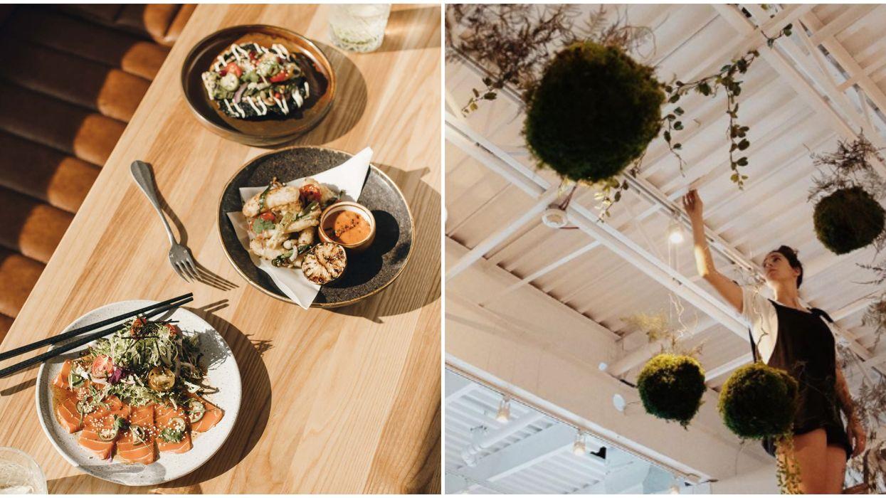 Casa Kaizen : ouverture d'un nouveau bar à tapas véganes à Montréal le 1er août