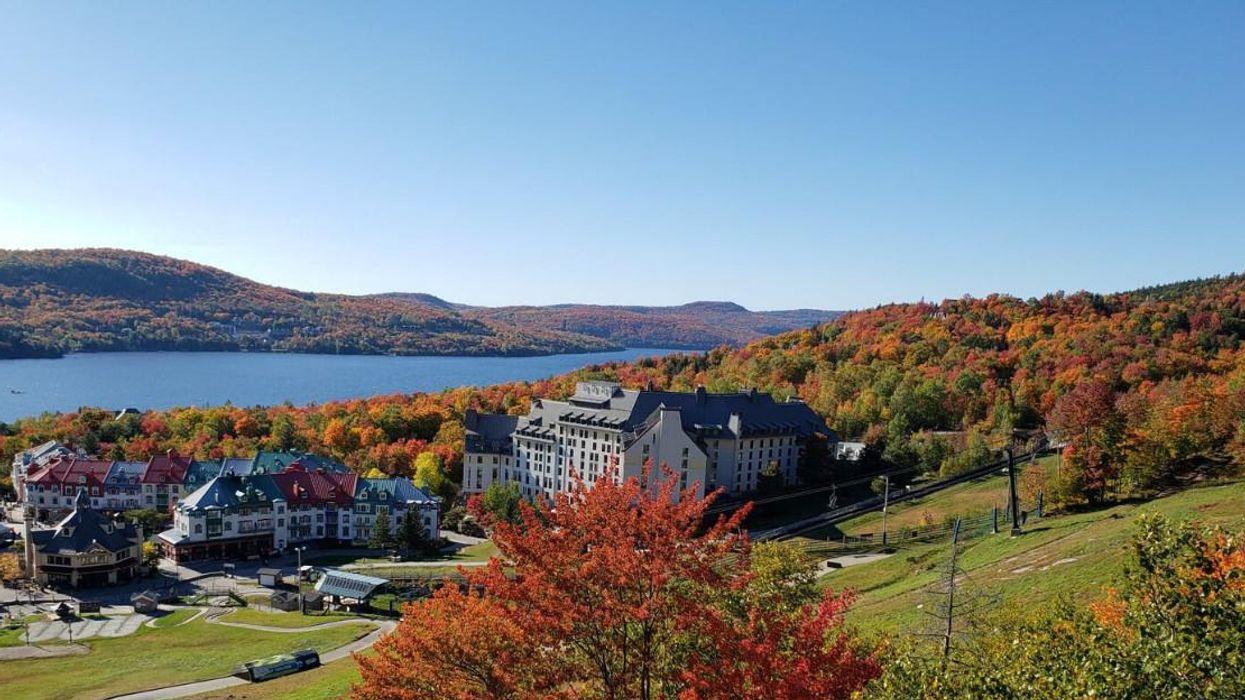 Cette carte te montre où aller pour voir les plus belles couleurs cet automne au Québec