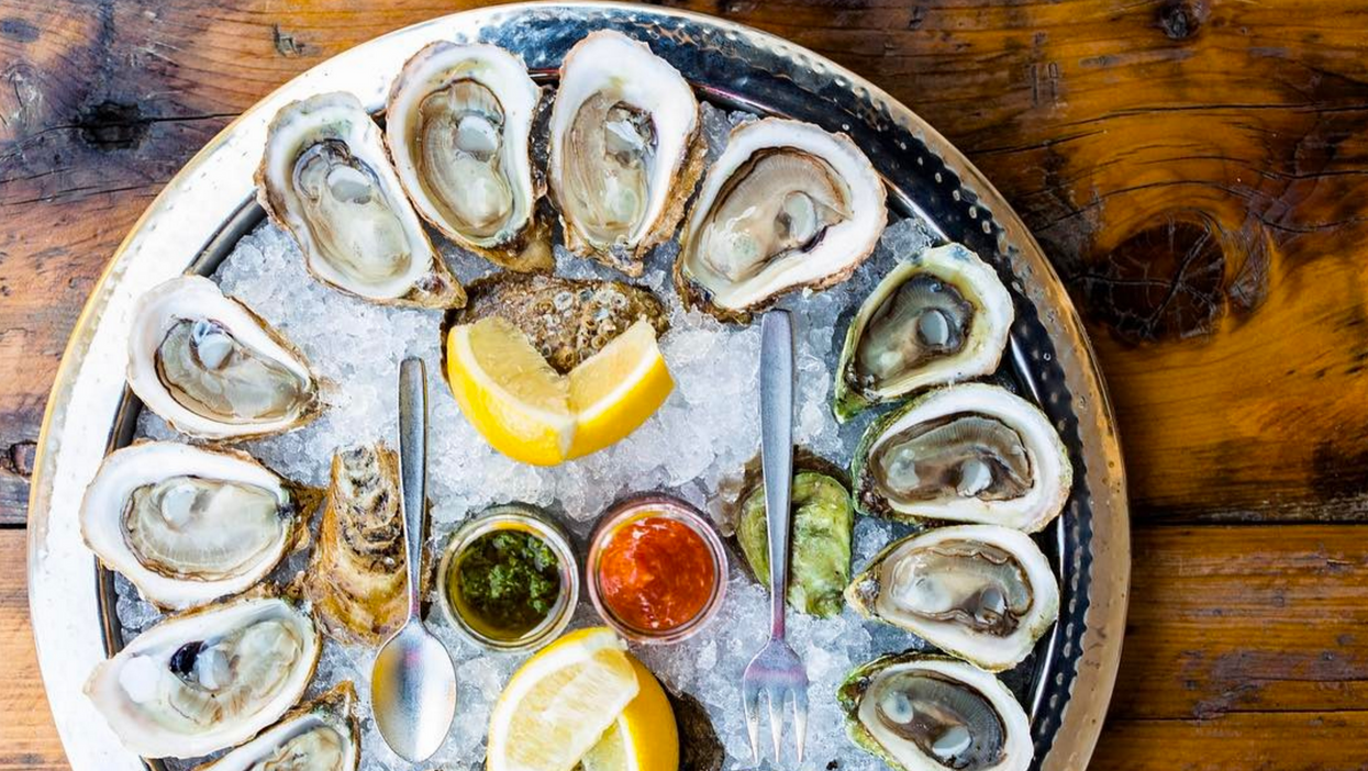 13 Best Places To Get Delicious Oysters In Halifax