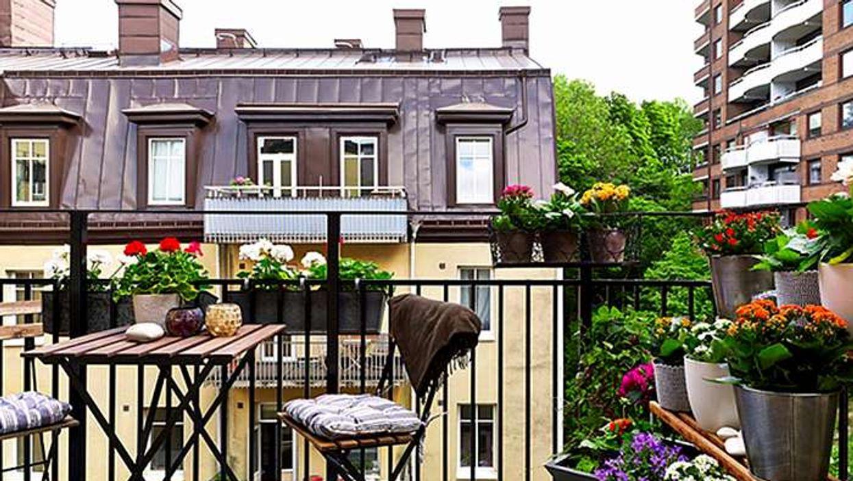 Transforme ton balcon en magnifique jardin ce weekend avec un budget de 5$ et moins!