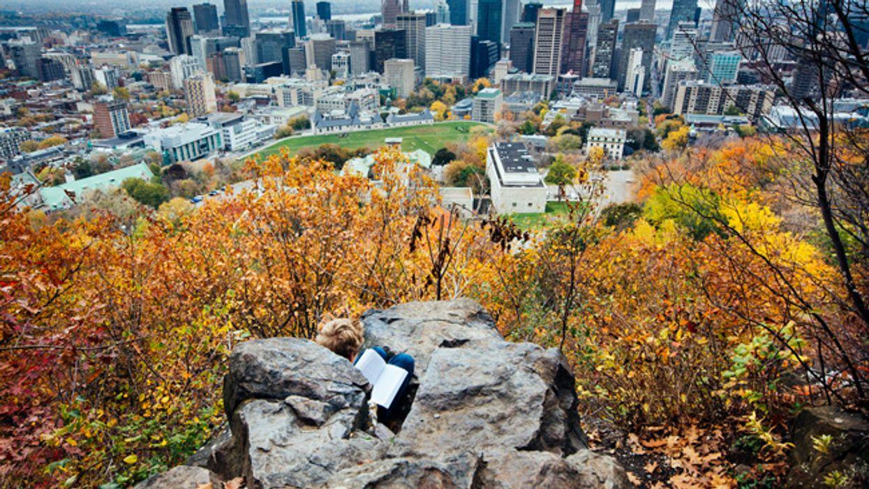 25 photos de Montréal en automne qui te feront oublier l'été
