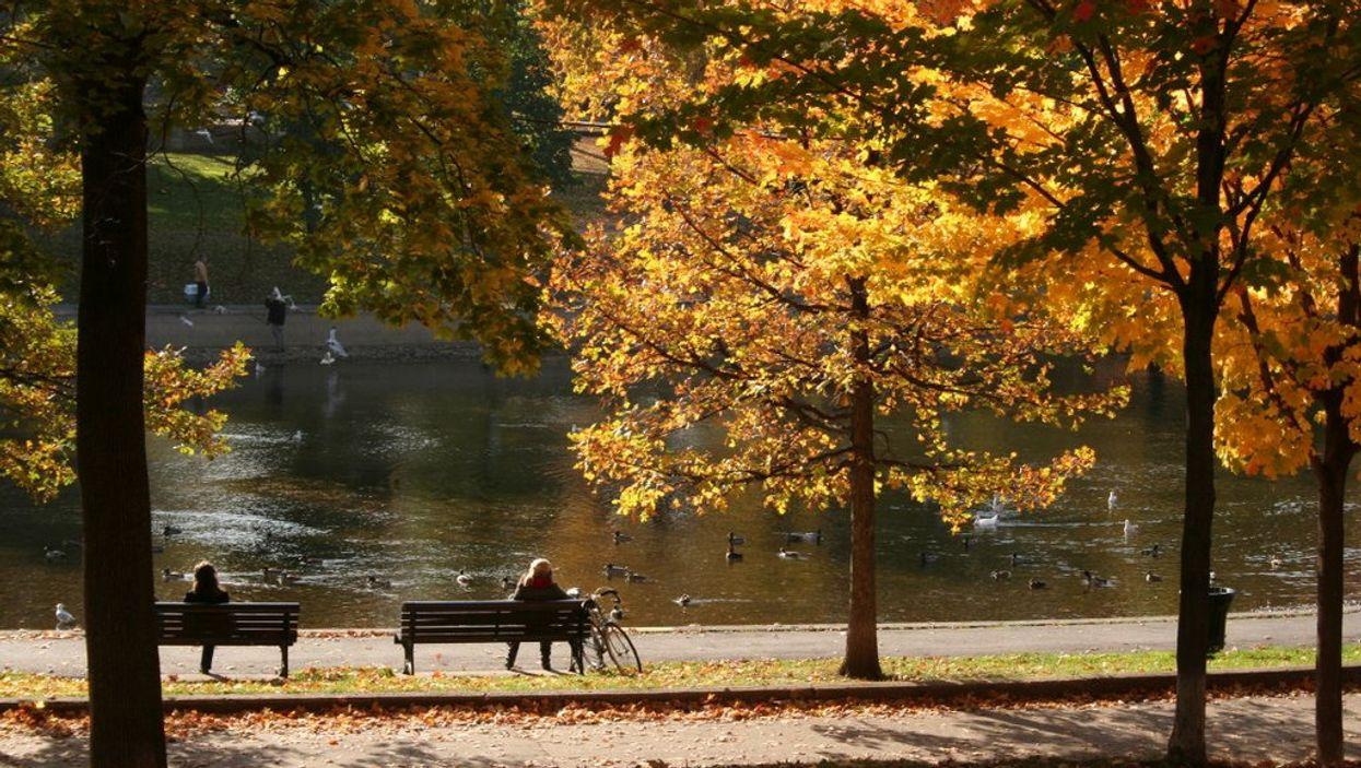 7 balades idéales à faire cet automne lors d'une date