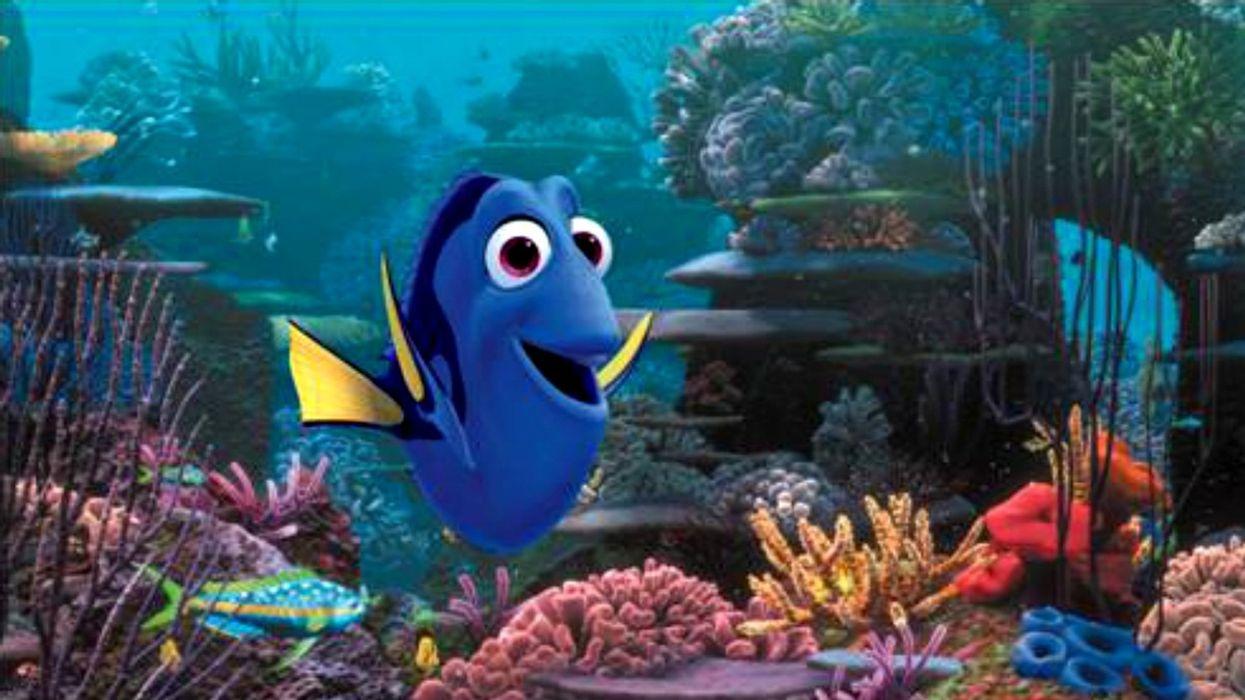 La bande-annonce de Nemo 2 «Finding Dory» est enfin là!