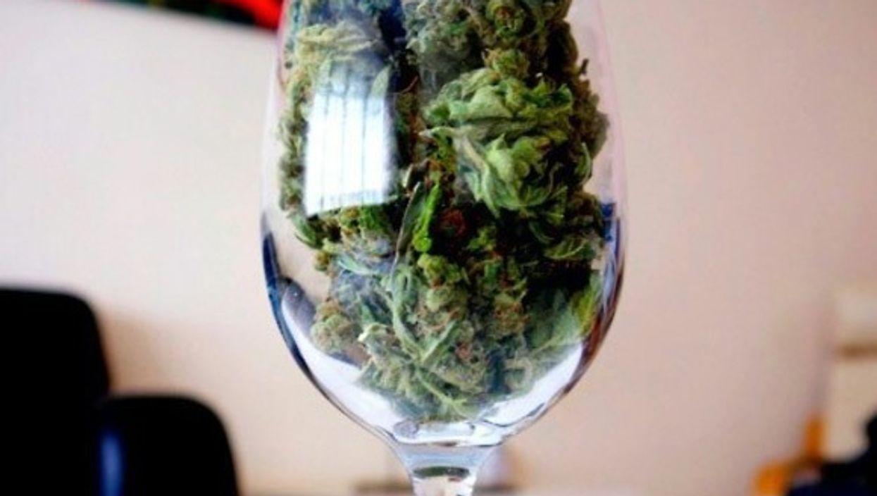 La SAQ pourrait commencer à vendre de la marijuana