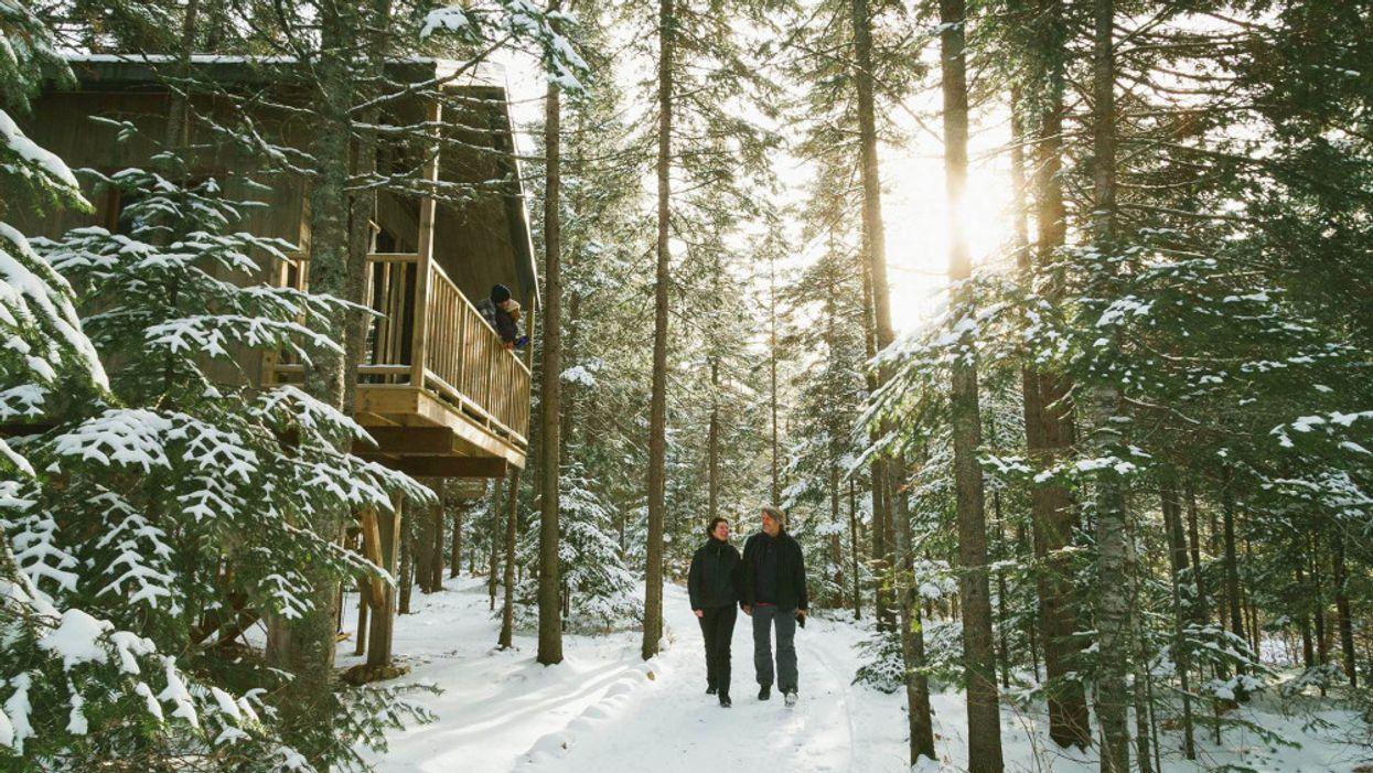 L'hôtel dans un arbre où tu dois aller cet hiver au Québec