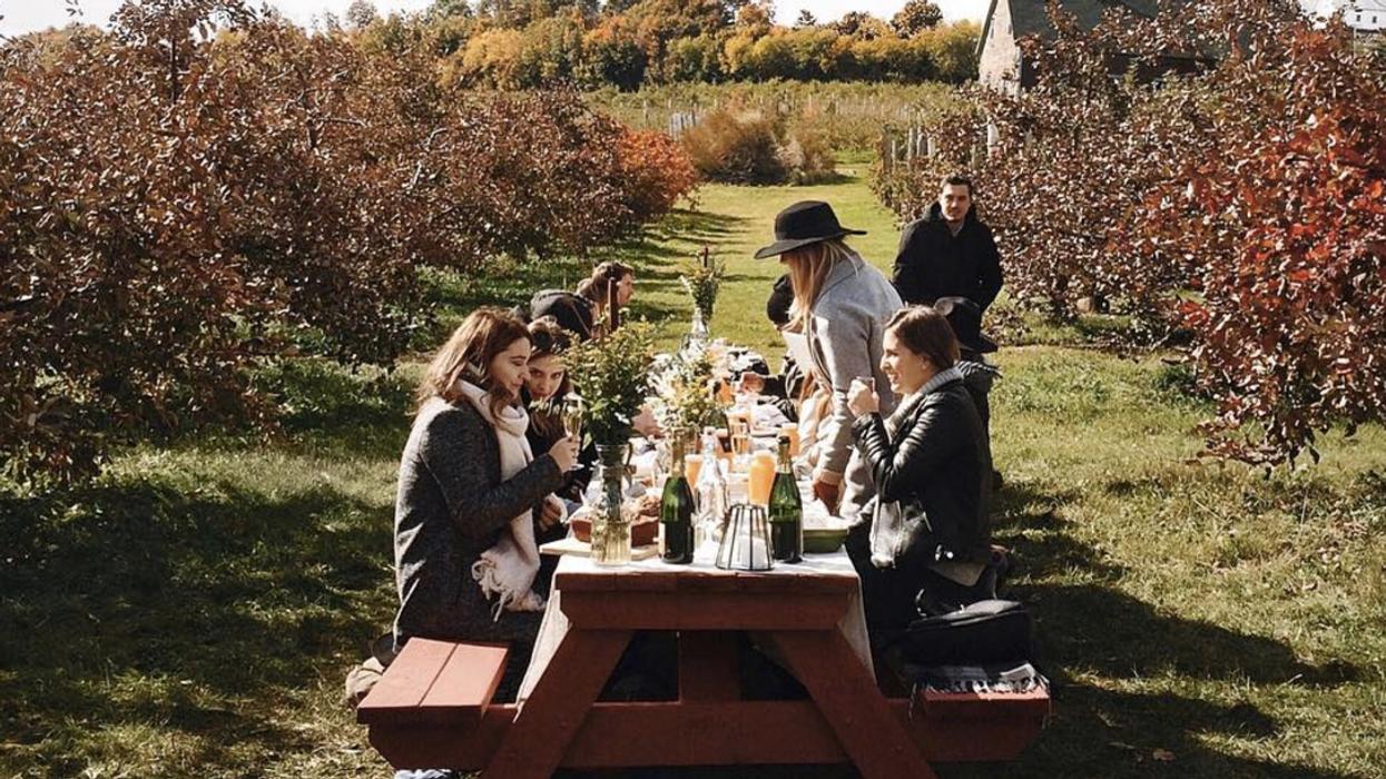 Les 14 plus beaux vignobles près de Montréal à découvrir cet automne