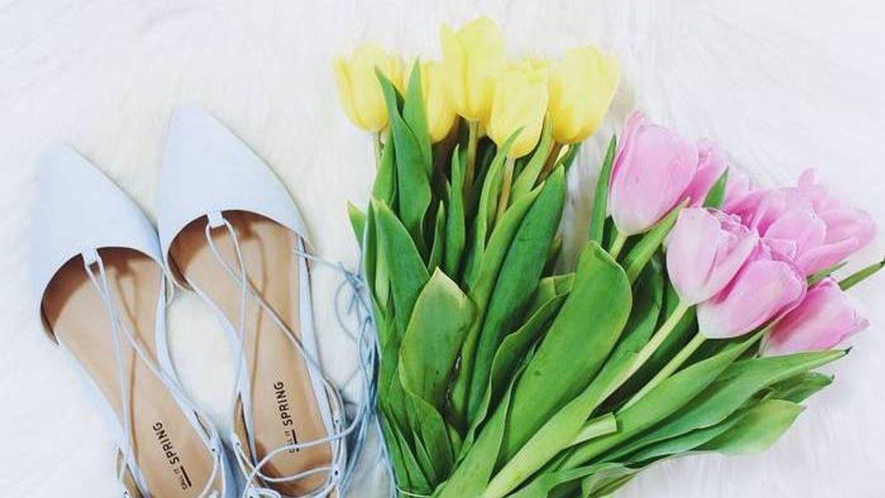 La marque Spring lance une collection Alice au pays des merveilles