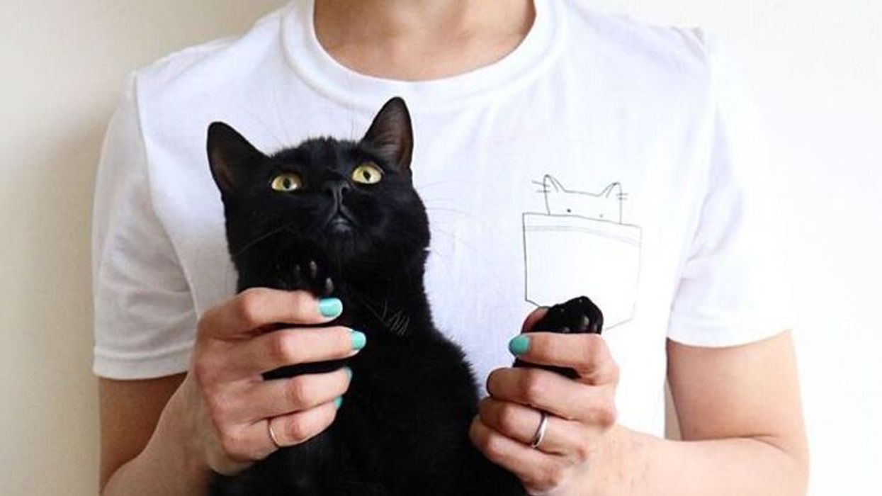 13 cadeaux trop cute à offrir à ton ami qui adore les chats