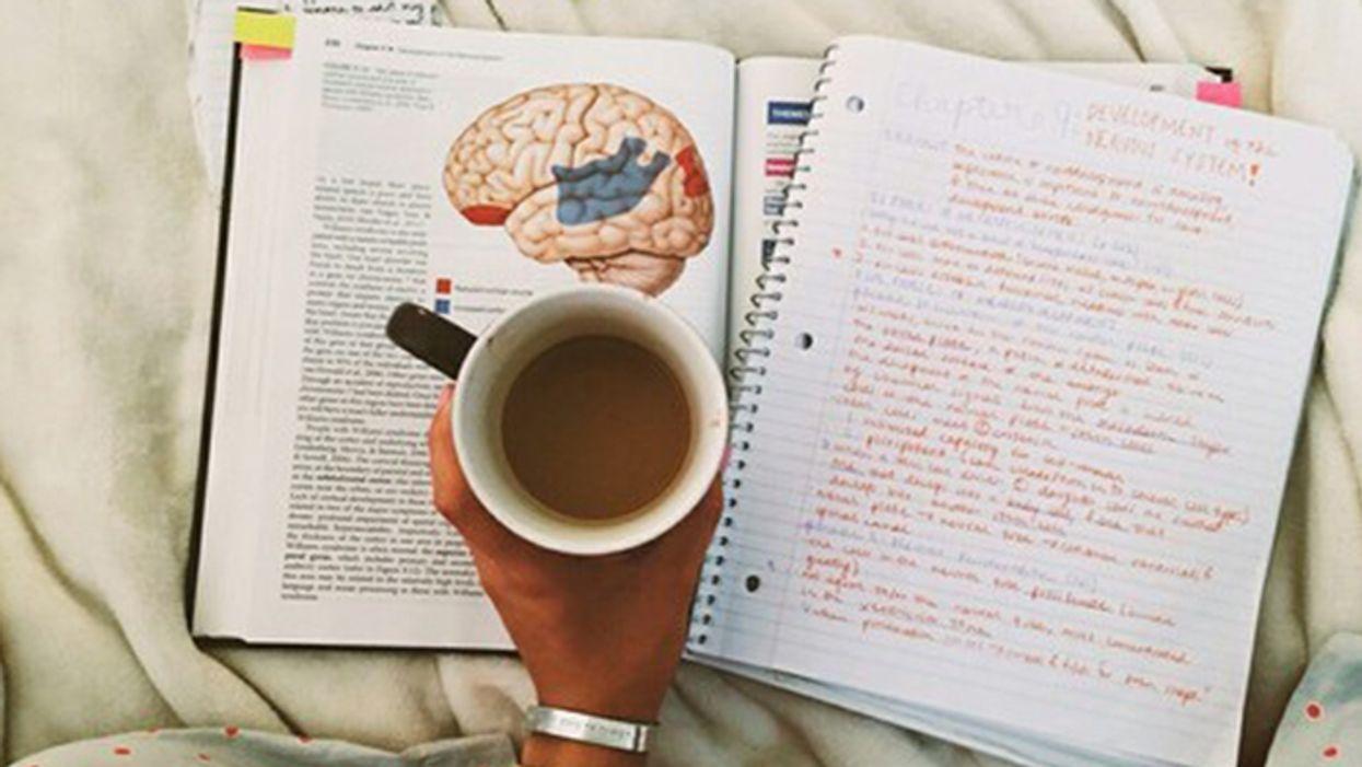 5 aliments qui stimuleront ton cerveau au max durant tes sessions d'étude