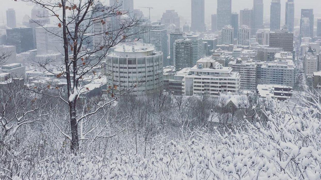 Voici pourquoi les Montréalais seront contents d'avoir un hiver plus froid cette année