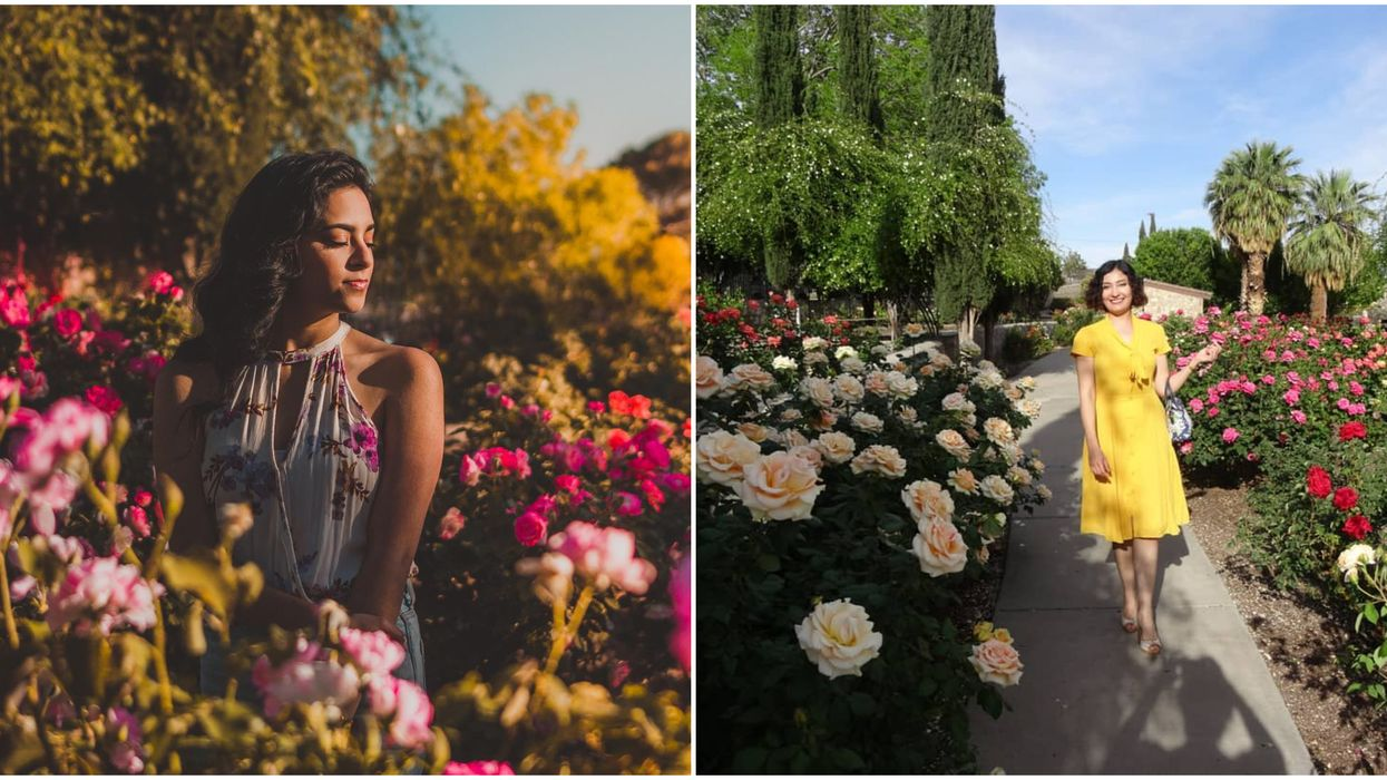 This Massive Rose Garden In West Texas Will Make You Feel Like You're In A Fairy Tale