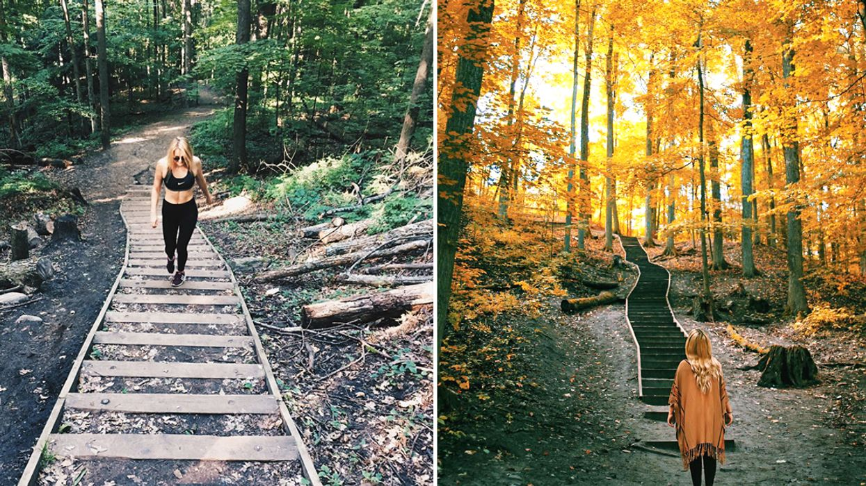 You Can Climb This Serene Trail With 99 Steps Through A Breathtaking Forest Near Toronto