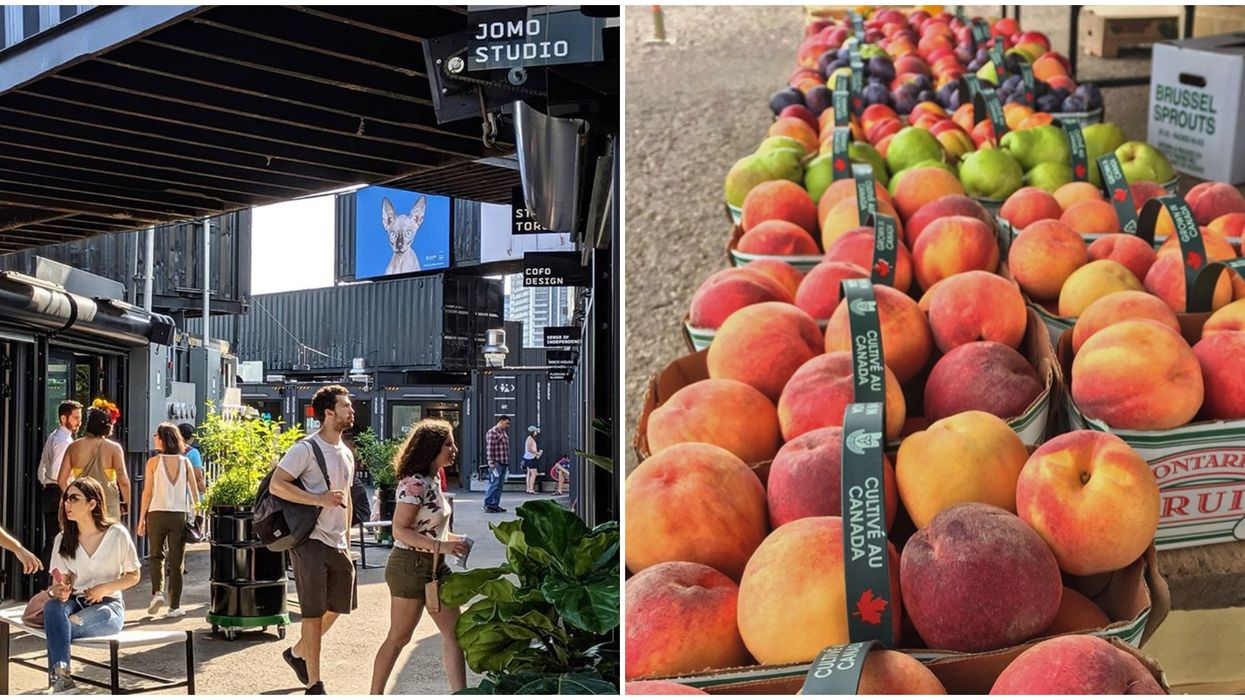 You Can Buy The Juiciest Fresh Fruit At This Pop-Up Container Market In Toronto