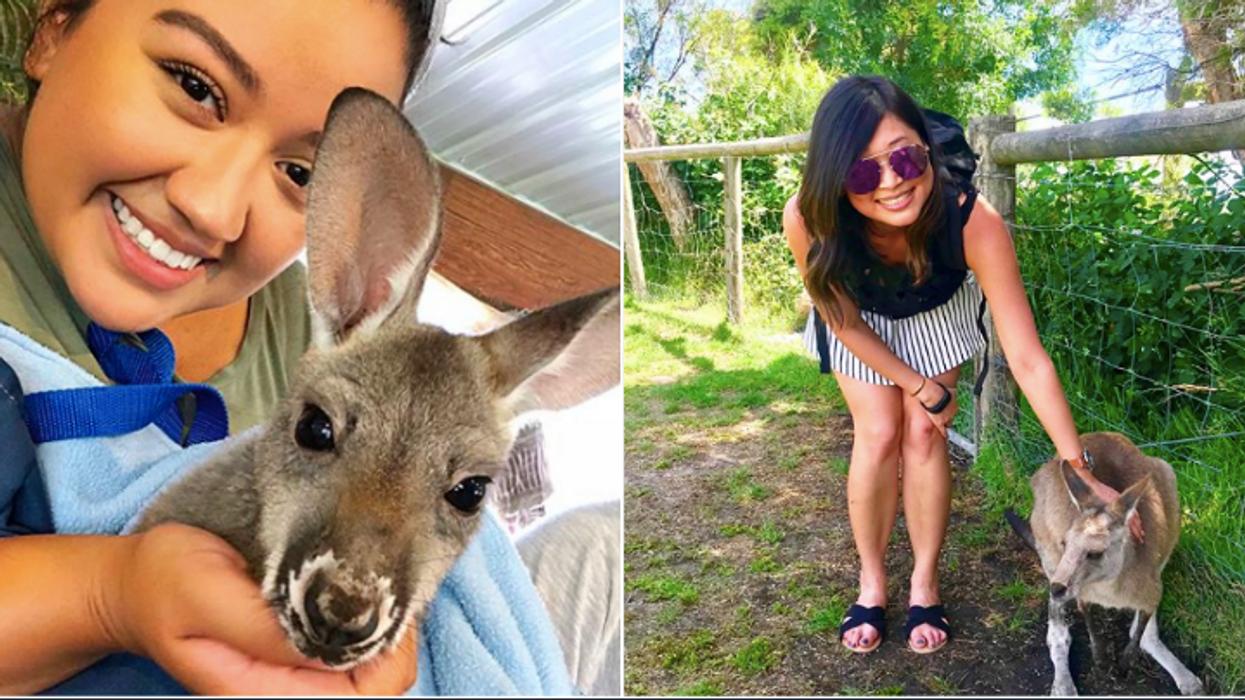 This North Georgia Zoo Will Make You Feel Like You're In Australia