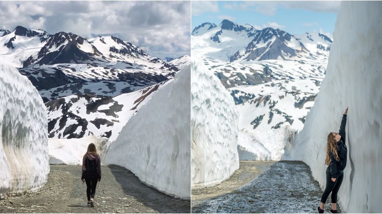 This BC Summer Hiking Trail Surrounded By Massive Snow Walls Needs To Be On Your August Bucket List