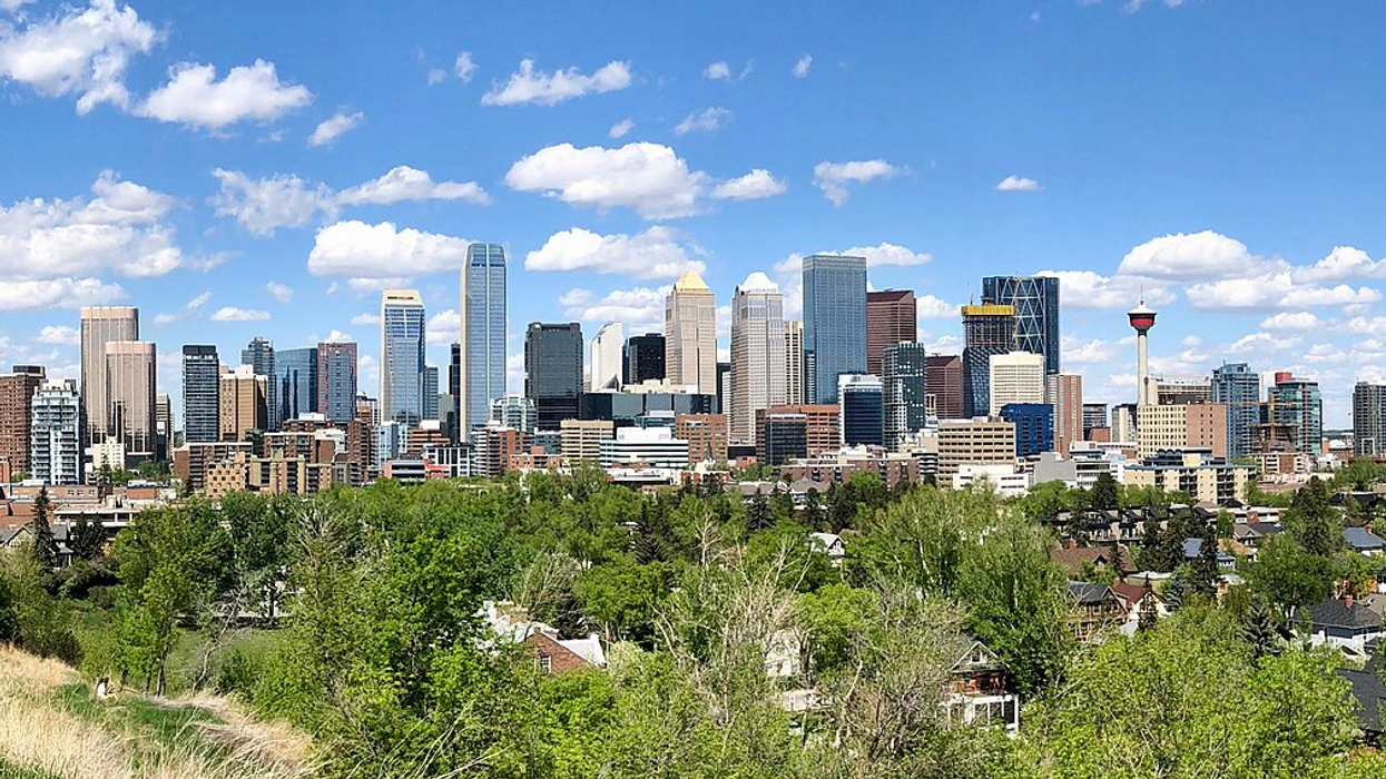 Calgarians Want To Know Who Is Putting Up Mysterious Signs All Over The City