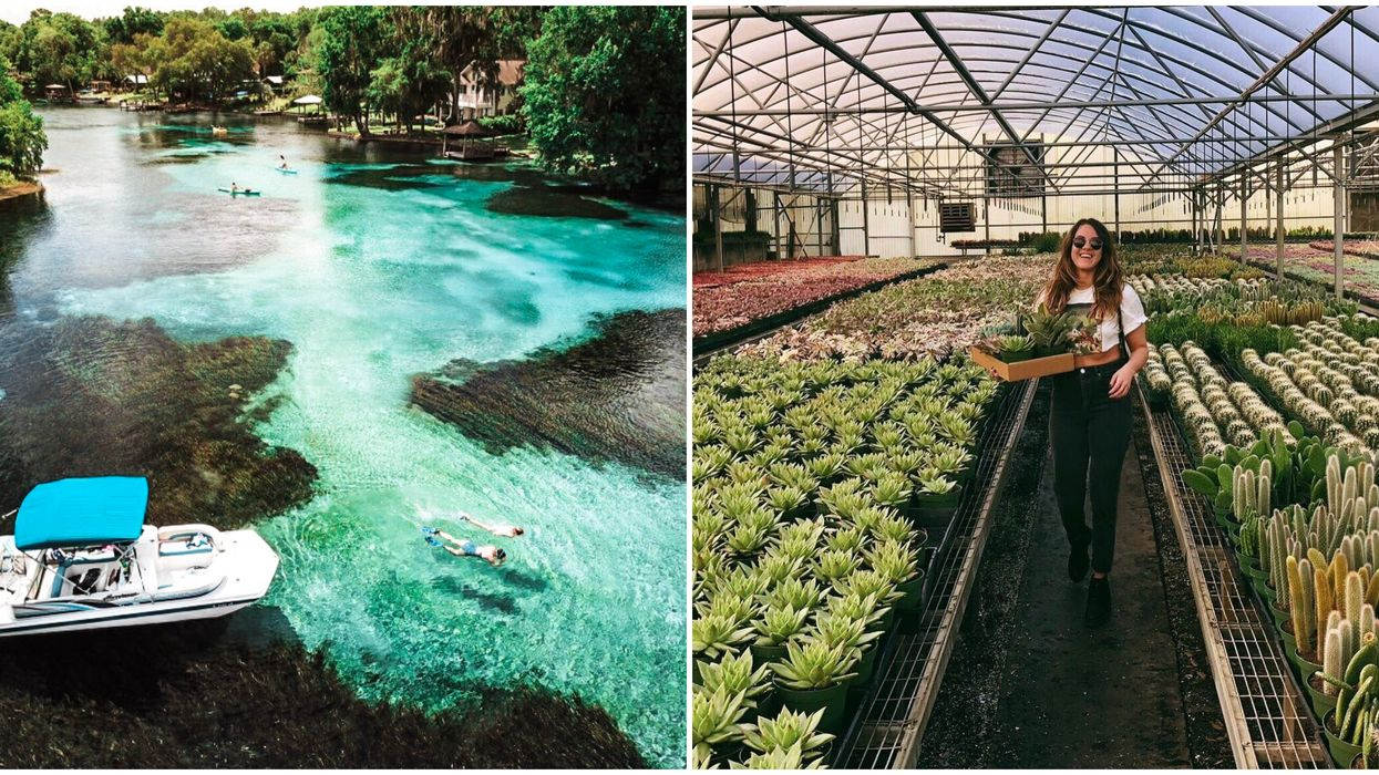 12 Spontaneous Day Trips That Are Less Than 3 Hours Away From Tampa