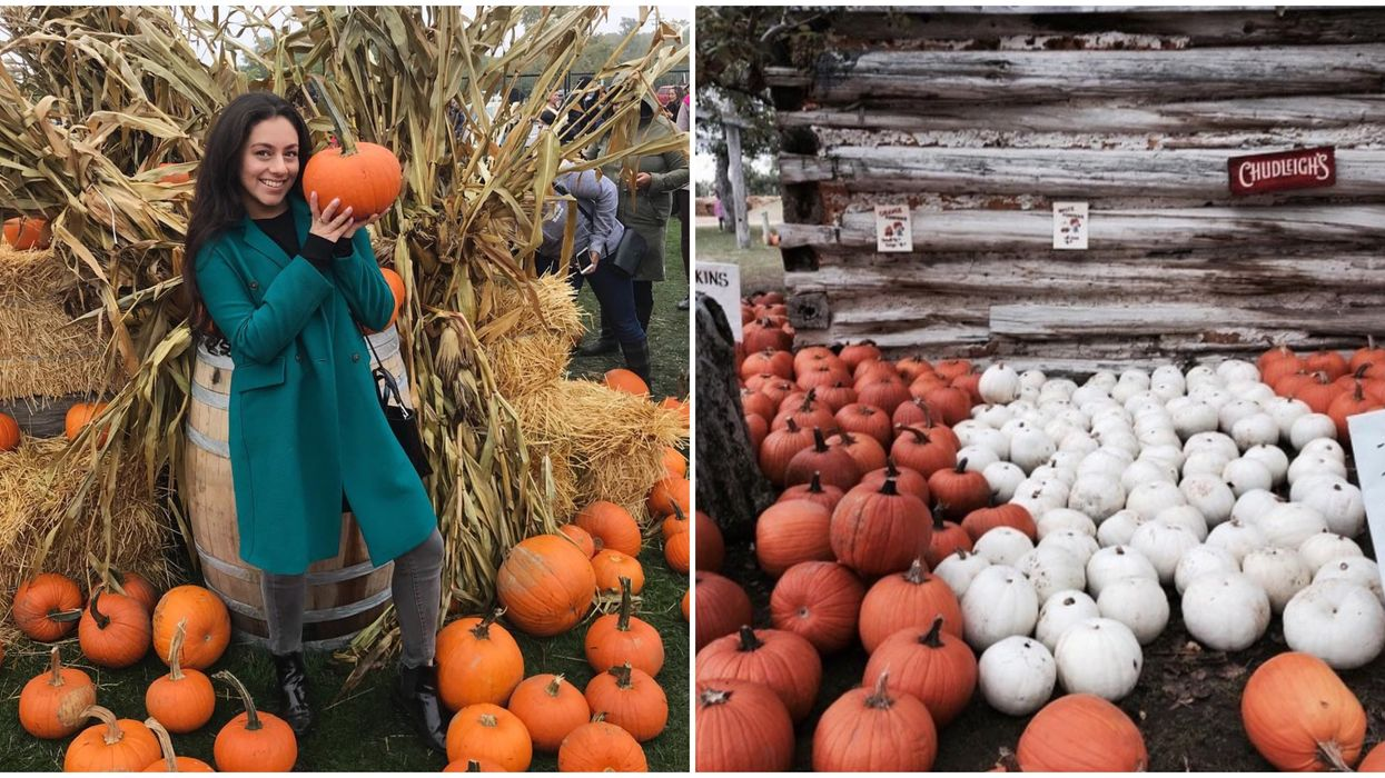 These 4 Pumpkin-Themed Activities Near Toronto Will Get You So Excited For Fall