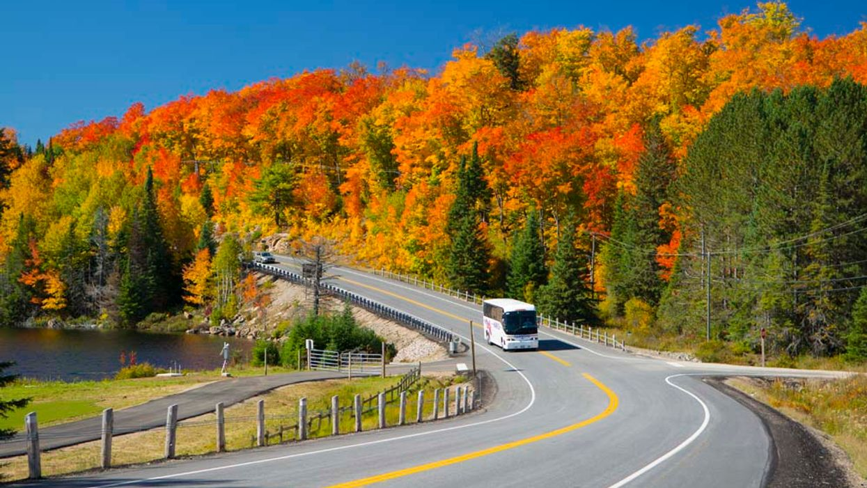 You Can Now Take A Cheap Shuttle Bus From Ottawa To Gatineau Park This August