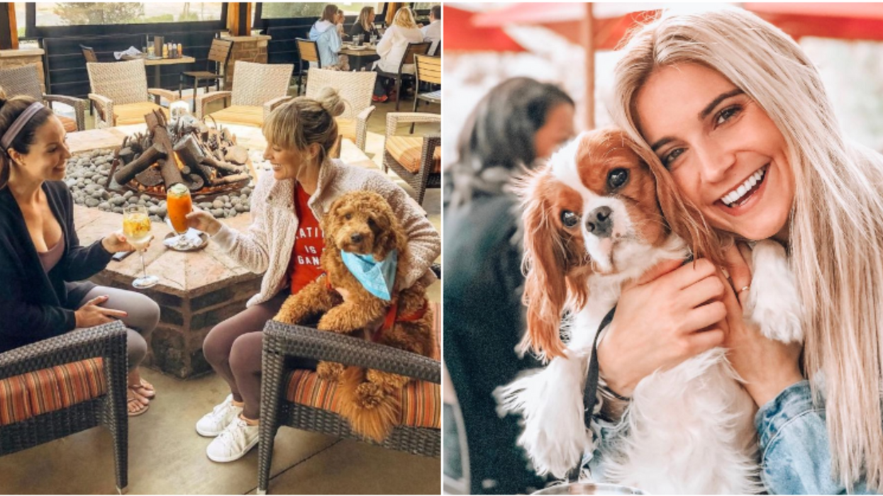 You Can Bring Your Pup To This Brand New Giant Dog-Friendly Restaurant And Bar In Houston
