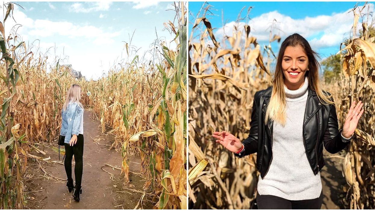 Ontario's Massive Corn Mazes Will Make You Wish It Could Be Fall Forever