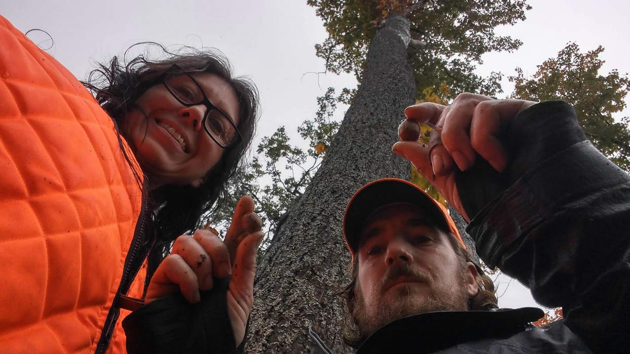 Northern Ontario couple forage for wild food