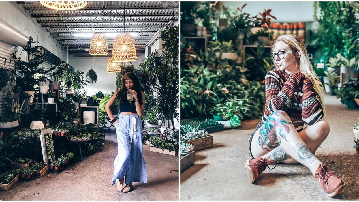 This Gorgeous Greenhouse Near Orlando Is Home To The Most Enchanting Coffee Cafe