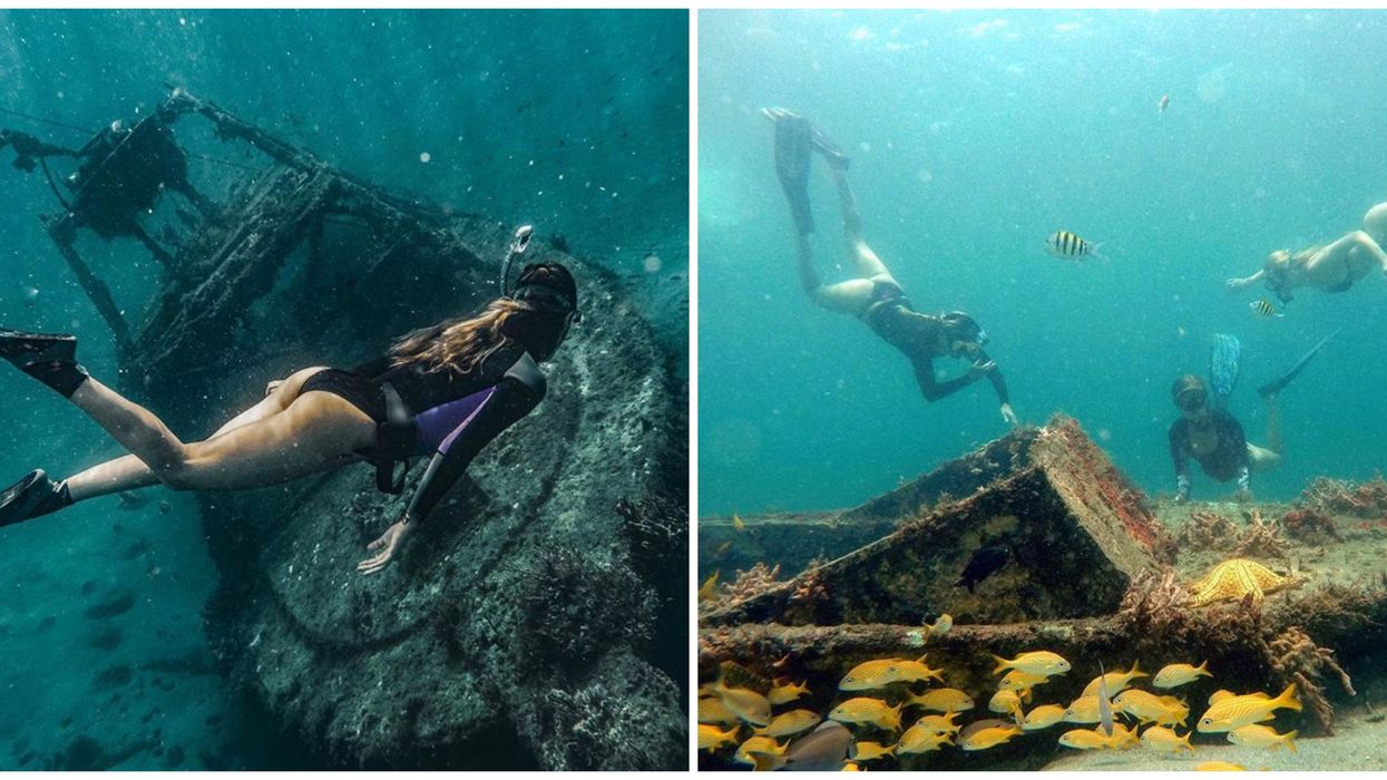 This 14-Acre Beach Park In South Florida Has A Hidden Snorkeling Trail With Shipwrecks
