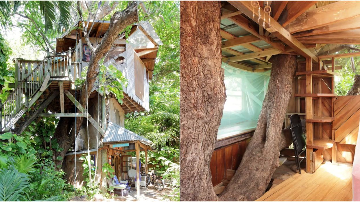 For Less Than A Hotel Room, You Can Stay In An Incredible Hidden Treehouse In Miami This Fall
